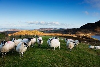 Irland Donegal Rundreise